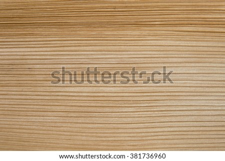 Natural texture of palm leaf background