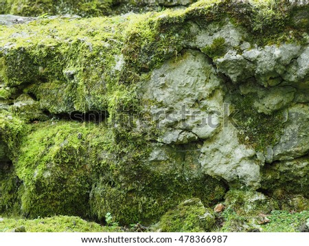 Natural texture of rocks with moss using a background