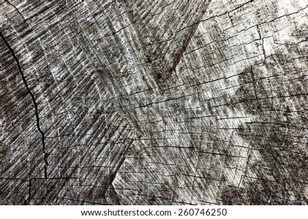 Natural Weathered Grey Tree Stump Cut Texture, Large Detailed Old Aged Gray Lumber Background Horizontal Macro Closeup, Dark Black Textured Cracked Pattern - stock photo