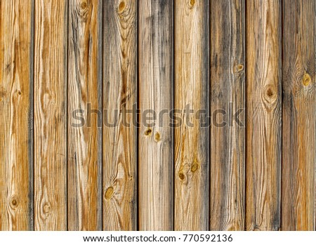 Natural Wood Texture Of Pine Grain With Knots Abstract Grunge Background Wallpaper Rustic