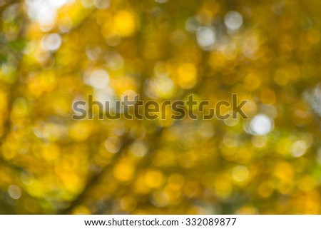 Natural yellow blurred background