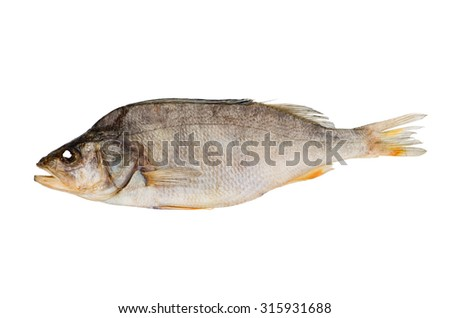 Naturally dried perch fish isolated on white background - stock photo