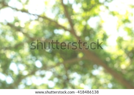 Nature abstract bokeh blurred background. Trees give life to the air Tree growth - stock photo