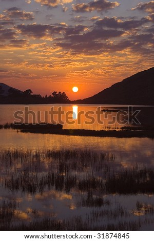 Nature Background 1 - stock photo