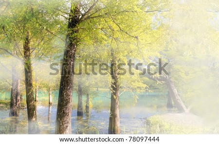 Nature background autumn forest near pond with mist in daytime. - stock photo