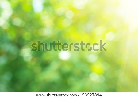 Nature background. Element of design. - stock photo