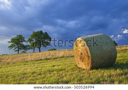 Nature background hale on field storm clouds