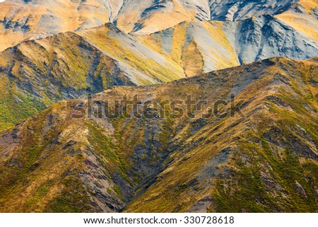 Nature background of fall colored alpine tundra habitat in high mountain range - stock photo