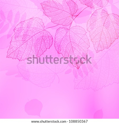 Nature background pink background, wallpaper, retro backdrop, frame, emblem, label, web, pattern, print, image, illustration, paint, design element, ornament card, art texture raster, vector available
