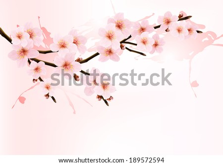 Nature background with blossoming sakura branch. Raster version. - stock photo