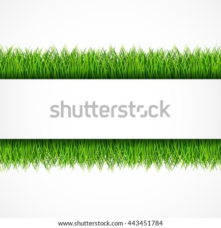 Nature background with fresh green grass