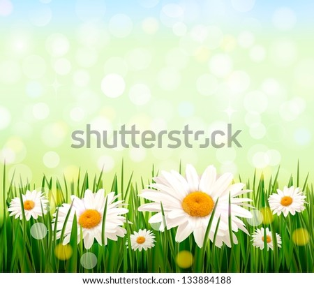 Nature background with green grass and flowers and blue sky. Raster version of vector - stock photo
