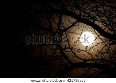 Nature background with moon in vintage style - stock photo