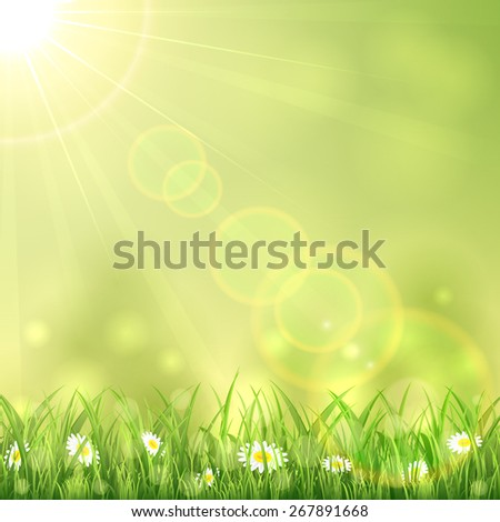 Nature background with the summer Sun and flowers in the grass, illustration. - stock photo