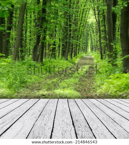Nature background with wood and beautiful nature background