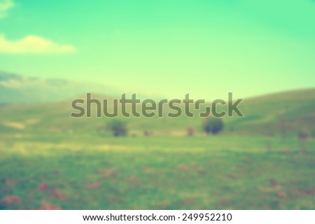 Nature blur background  - stock photo