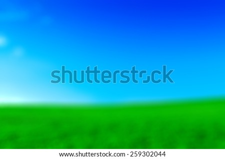 Nature blur background Bright green field on a sunny day - stock photo
