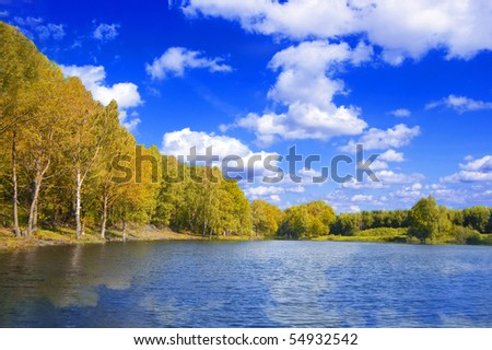 Nature conceptual image. View of the lake near the forest in summer.