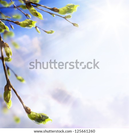 nature easters background of the young spring leaves - stock photo