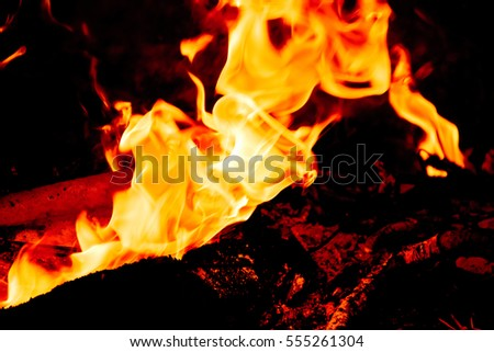 Nature Fire flames at dark night. Freeze motion of Red-Yellow fire flames burning.Burning camp fire with hot flames.
