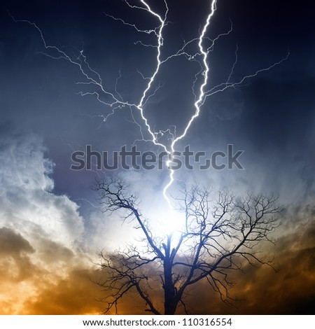 Nature force background - tree struck by lightning from dark sky - stock photo