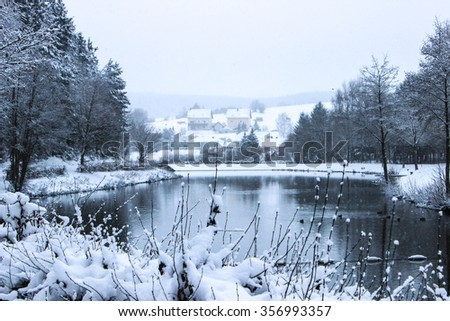 Nature forest lake in winter knows everything