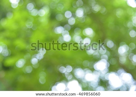nature green bokeh background