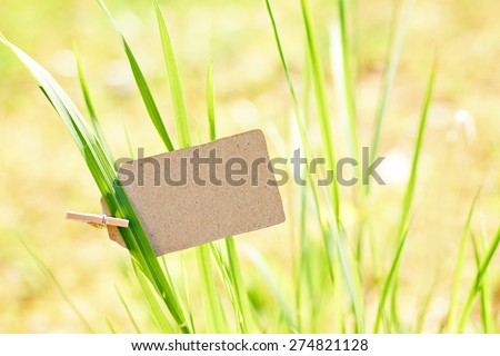 nature greeting card background - environment protection - stock photo