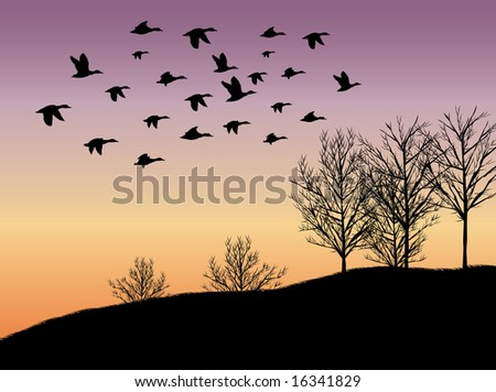 nature illustration background - stock photo