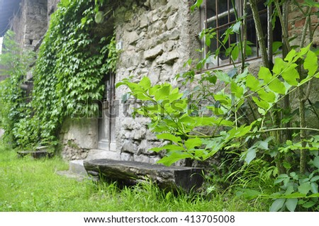 Nature in a wonderful abandoned house or fabric