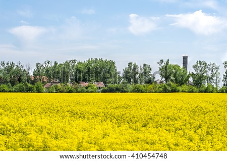 Nature landscape  - stock photo