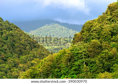 Nature. Mountain forest landscape under sunlight with heavy blue sky scenery. Nature forest landscape. Mountain forest landscape view. Mountain forest in clouds. Mountain landscape. Russia landscape - stock photo