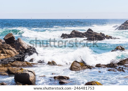 Nature of the Chilean coast of the Pacific Ocean