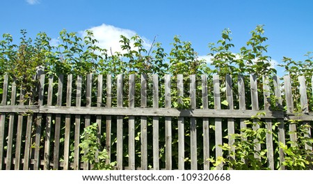 nature of the fence and the sky