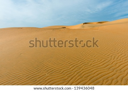 Nature of the Sahara desert