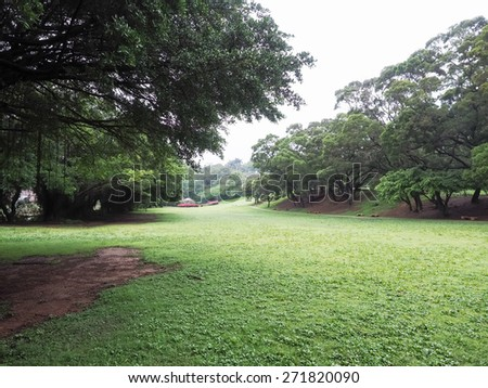 nature park - stock photo