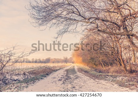 Nature path at wintertime in the morning sunrise - stock photo