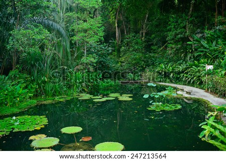 Nature, Penang - stock photo