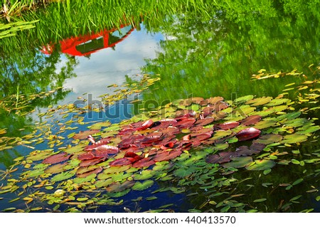 Nature pond with waterlily, picture in impressionistic style - stock photo