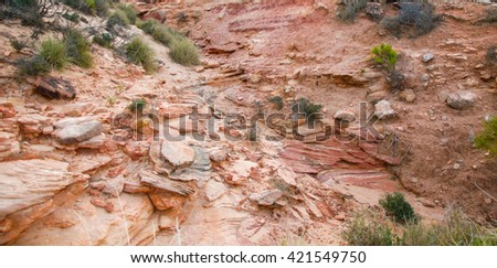 Nature's textures of sand, rock and flora on Murchison River bank in Kalbarri, Western Australia/Kalbarri River Bank/Murchison River, Western Australia