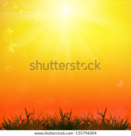Nature season.Abstract summer background