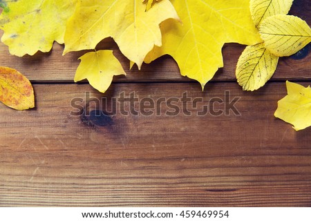 nature, season, advertisement and decor concept - close up of many different fallen autumn leaves on wooden board - stock photo