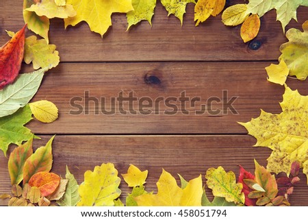 nature, season, advertisement and decor concept - frame of different fallen autumn leaves on wooden board - stock photo