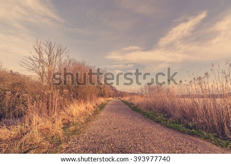 Nature trail with naked trees in the late autumn - stock photo