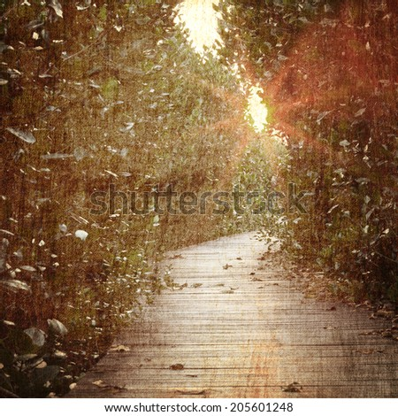 Nature vintage background - stock photo