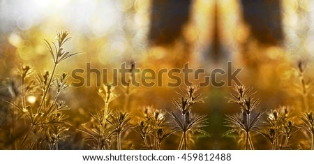 Nature website banner of a beautiful sunrise in autumn - stock photo