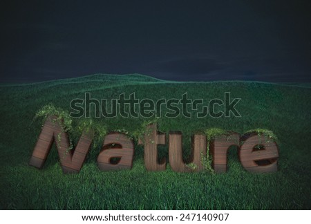 nature wood letter wooden type text logo billboard  hills green night concept ecology