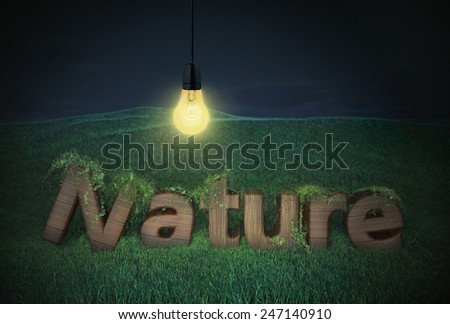 nature wood letter wooden type text logo billboard light bulb hills green night concept ecology  - stock photo