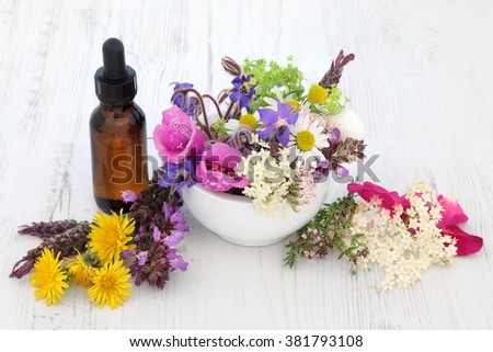 Naturopathic flower and herb selection in a mortar with pestle and medicinal dropper bottle over white background. - stock photo