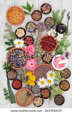 Naturopathic flower and herb selection used in alternative herbal medicine on over distressed wooden background. - stock photo